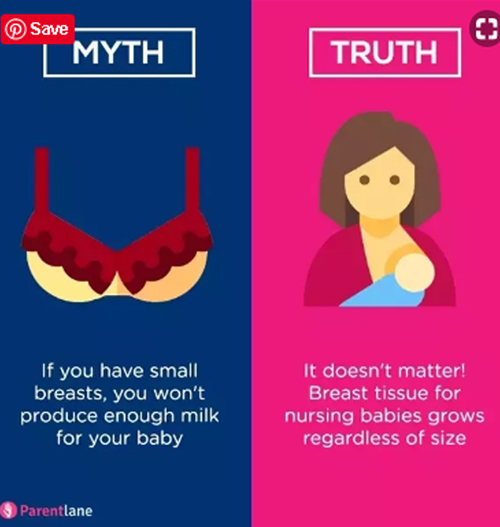 milk ducts are different from fatty tissues