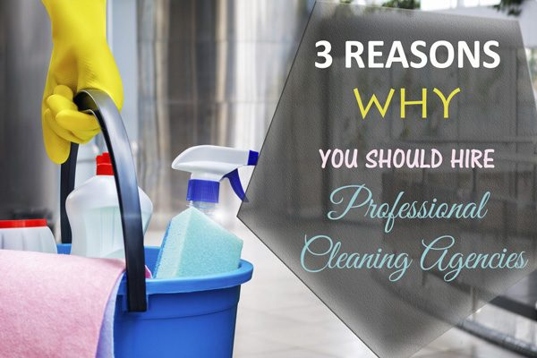 professional cleaning agencies